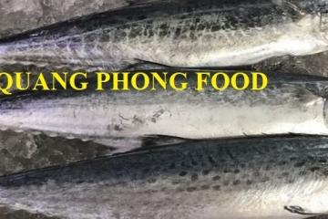 25 Cách chế biến cá thu ngon nhất